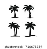 coconut tree palms for travel... | Shutterstock .eps vector #716678359