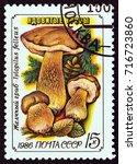 ussr   circa 1986  a stamp... | Shutterstock . vector #716723860