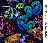 embroidery sea life  sea shells ... | Shutterstock .eps vector #716738080