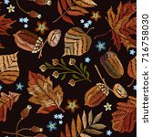 embroidery autumn seamless... | Shutterstock .eps vector #716758030