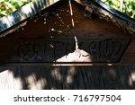 greenland  | Shutterstock . vector #716797504