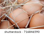 brown eggs in the straw close... | Shutterstock . vector #716846590