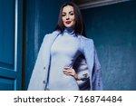 sexy elegant woman  | Shutterstock . vector #716874484