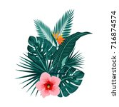 tropical leaves of palm tree ... | Shutterstock .eps vector #716874574