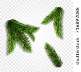 Collection Of Fir Branches. Se...