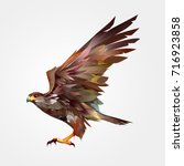 isolated colored painted flying ... | Shutterstock . vector #716923858