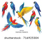 tropical parrots collection.... | Shutterstock .eps vector #716925304