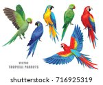 tropical parrots collection.... | Shutterstock .eps vector #716925319