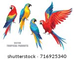 tropical parrots collection.... | Shutterstock .eps vector #716925340
