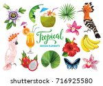tropical collection for summer... | Shutterstock .eps vector #716925580