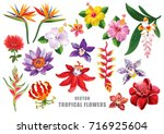 tropical flowers set. vector... | Shutterstock .eps vector #716925604