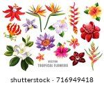 Tropical flowers collection. Vector isolated elements on the white background. | Shutterstock vector #716949418