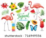 tropical collection for summer... | Shutterstock .eps vector #716949556