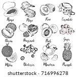 set of fruits and berries in... | Shutterstock .eps vector #716996278