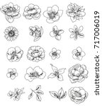 flower set | Shutterstock . vector #717006019