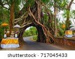 traditional balinese hindu... | Shutterstock . vector #717045433