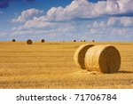 Big Round Bales Of Straw In Th...