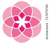 abstract floral pink logo...   Shutterstock .eps vector #717075700