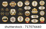 gold and silver luxury badges... | Shutterstock .eps vector #717076660