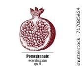 pomegranate fruit retro design...   Shutterstock .eps vector #717085624