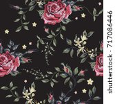 embroidery floral seamless... | Shutterstock .eps vector #717086446
