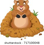 cartoon groundhog looking out... | Shutterstock . vector #717100048