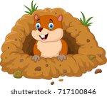 cartoon groundhog looking out...   Shutterstock .eps vector #717100846