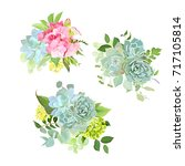 stylish mix of spring bouquets... | Shutterstock .eps vector #717105814