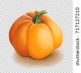 realistic vector pumpkin... | Shutterstock .eps vector #717127210