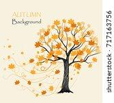 autumn maple tree on white... | Shutterstock .eps vector #717163756