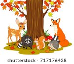 cartoon wild creatures in the... | Shutterstock .eps vector #717176428