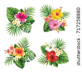 Stock vector tropical summer bouquet with palm leaves and exotic flowers vector illustration 717258880
