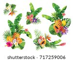 tropical summer bouquet with... | Shutterstock .eps vector #717259006