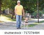 guide dog helping blind man in... | Shutterstock . vector #717276484