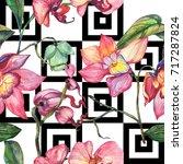 wildflower orchid flower... | Shutterstock . vector #717287824
