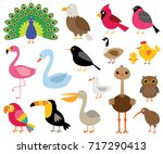vector cartoon birds  isolated... | Shutterstock .eps vector #717290413