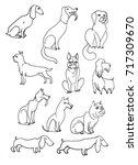 ink sketches of dogs on white... | Shutterstock . vector #717309670