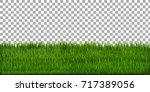 grass border with isolated... | Shutterstock .eps vector #717389056