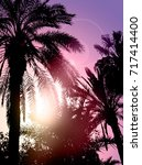 palm trees with sky and sunset  ... | Shutterstock . vector #717414400