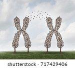 gene science and dna exchange... | Shutterstock . vector #717429406
