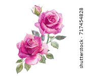 Stock photo watercolor illustration of a bouquet of pink rose greeting flower card 717454828