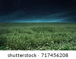 Landscape Of Starry Night With...