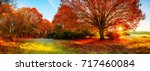 landscape in autumn with big... | Shutterstock . vector #717460084