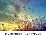 grass during sunset with retro... | Shutterstock . vector #717495304