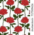 hand drawn flowering roses.... | Shutterstock .eps vector #717509626