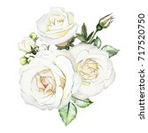 Stock photo watercolor flowers floral illustration leaf and buds botanic composition for wedding or 717520750