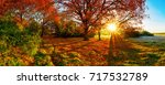 wonderful autumn landscape with ... | Shutterstock . vector #717532789
