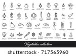 vegetables collection. healthy... | Shutterstock .eps vector #717565960