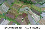 an aerial view of a rice... | Shutterstock . vector #717570259