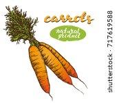 carrots vegetable set hand...   Shutterstock .eps vector #717619588